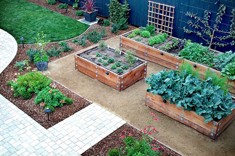 Earthscapes Landscaping Services Edible Gardens